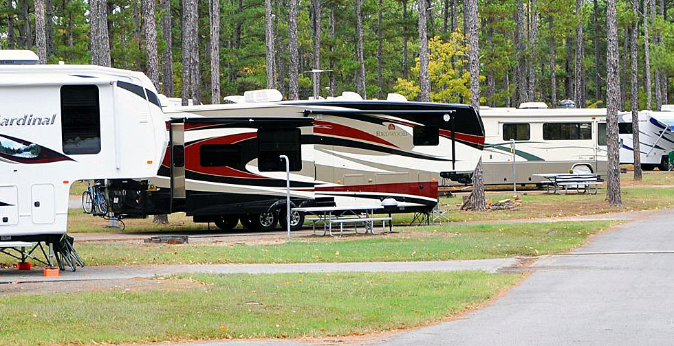 RVs-in-the-pine1-980x504